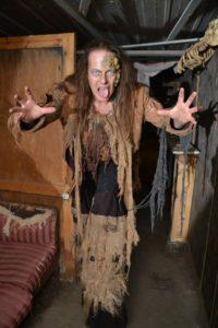 michigan Haunted house pirate